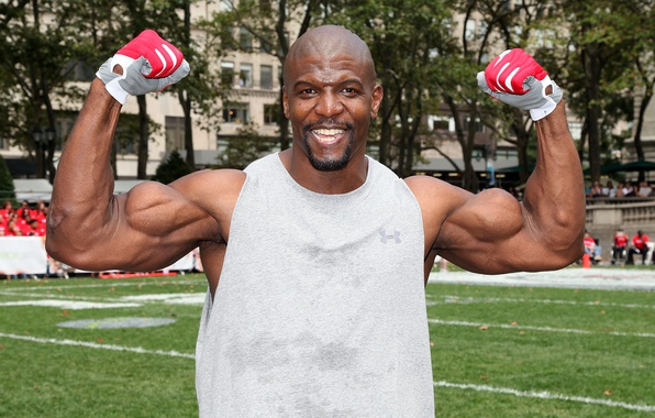 Picture look, smile, bald, actor, gloves, muscle, muscle, pose, Terry Crews, Terry Crews, bodybuilder, biceps, bodybuilder