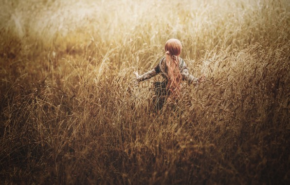 Picture field, grass, doll