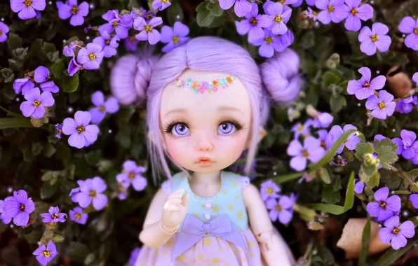 Picture flowers, toy, doll