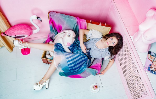 Picture girl, style, mood, toys, dog, Doll, chest, Flamingo, Sergey Smirnov