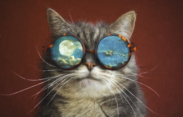 Picture cat, space, the moon, glasses