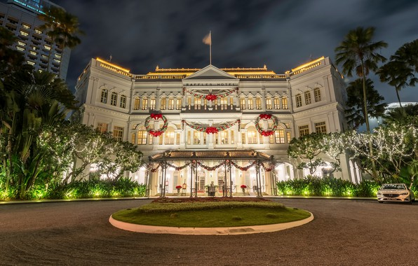Picture night, lights, palm trees, new year, Christmas, area, Singapore, garland, Palace