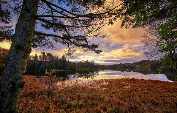 Picture autumn, Norway, Norway, Rogaland