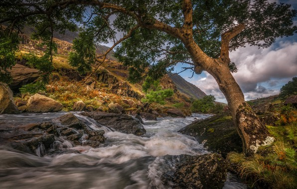 Picture clouds, mountains, stream, stones, tree, for