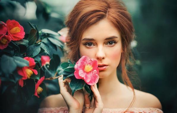 Picture flowers, sponge, brown-eyed, Olga Boyko, A flower