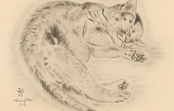 Picture cat, fluffy, sleeping, cutie, 1929, Tsuguharu Foujita, The Book Of Cats
