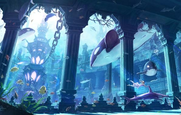 Picture fish, fantasy, the ocean, art, girl, makkou4