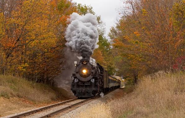 Picture autumn, forest, train