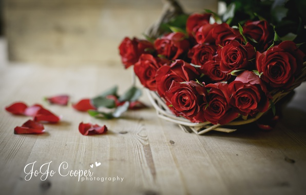 Picture flowers, Board, roses, petals, basket