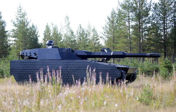 Picture concept, test, Poland, tank, armored, vegetation, futuristic, cannon, stealth, BAE Systems, modern weapon, PL-01, PL …