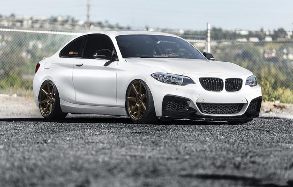 Picture BMW, F22, White, Alpine