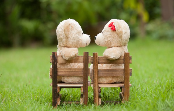 Picture love, toy, bear, pair, love, two, bear, park, kiss, romantic, teddy, cute