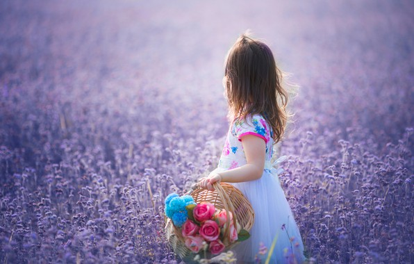 Picture flowers, mood, meadow, girl, basket
