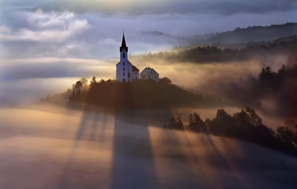 Picture forest, light, fog, morning, Church
