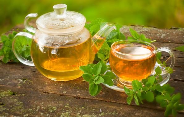 Picture tea, drink, mint