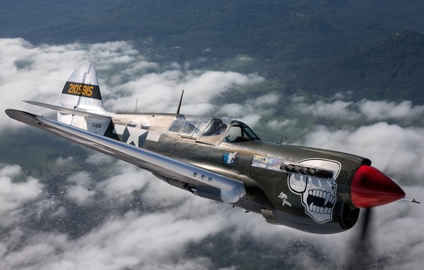 Picture skull, the plane, flies, Curtiss P-40