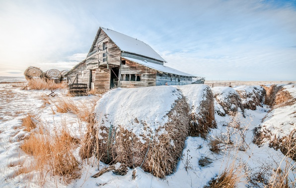 Picture winter, snow, house, hay
