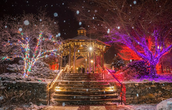 Picture winter, snow, trees, snowflakes, night, lights, Park, holiday, Christmas, lights, ladder, New year, USA, garland, …
