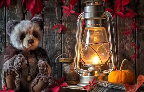 Picture leaves, toy, lamp, bear, lantern, pumpkin, Teddy bear, coil