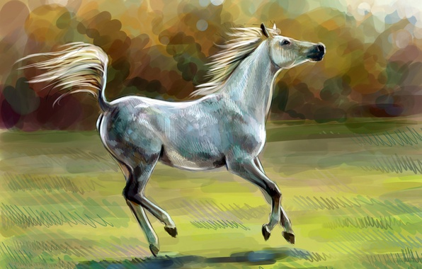 Picture horse, horse, oil, art, watercolor, pencil, painting, horse, gouache, wallpaper., painting painting, nature field sun, …