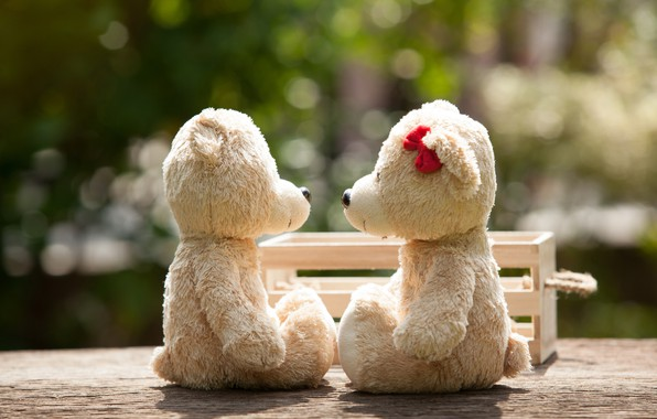 Wallpaper Love Toy Bear Pair Love Bear Park Kiss Romantic
