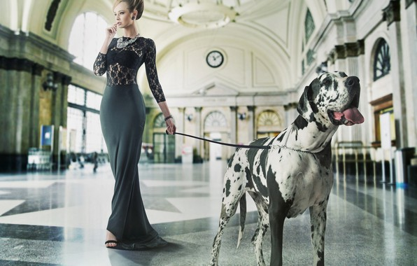 Picture girl, dog, makeup, figure, dress, hairstyle, leash, hall, great Dane