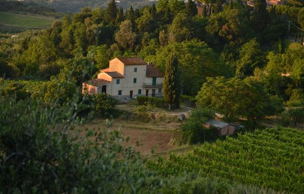 Picture Panorama, House, Italy, Nature, Landscape, Italy, Tuscany, Italia, Village, Panorama, Toscana, Tuscany