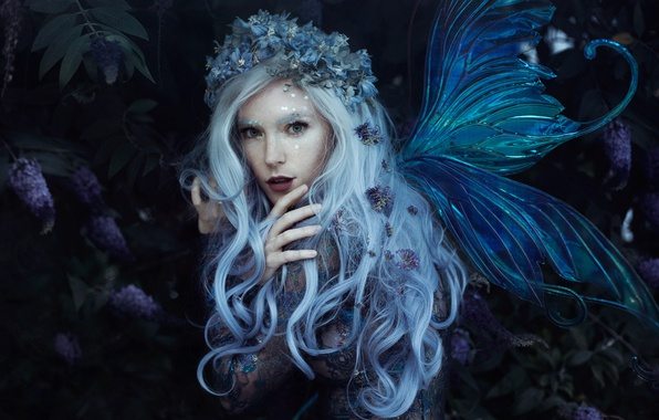 Picture look, girl, style, hair, fairy, wings, wreath, Bella Kotak, Jessica Dru, Violet dreams