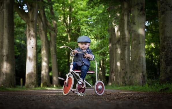 Picture bike, boy, male