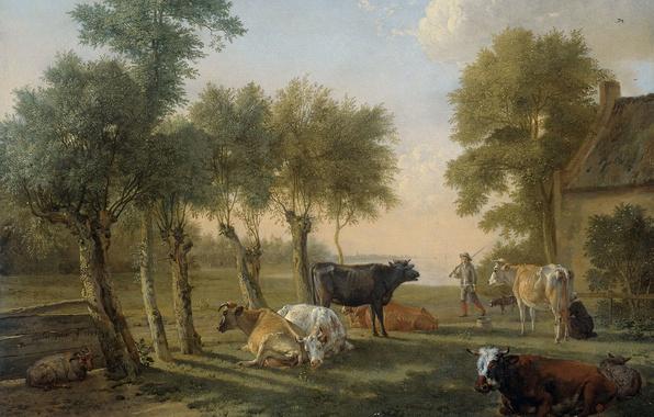 Picture animals, oil, picture, canvas, Paulus Potter, Cows on Pasture near the Farm