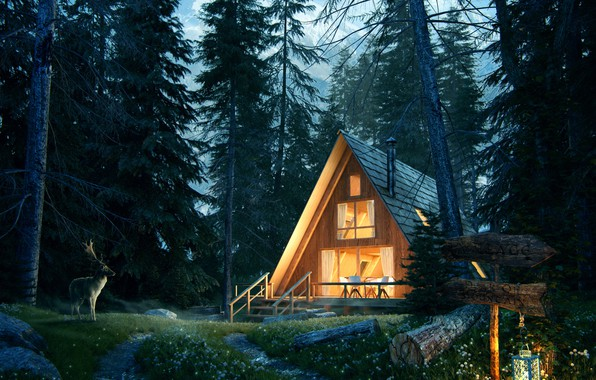 Picture forest, house, deer, lantern, Lost in the forest, Forest House Jour Nuit
