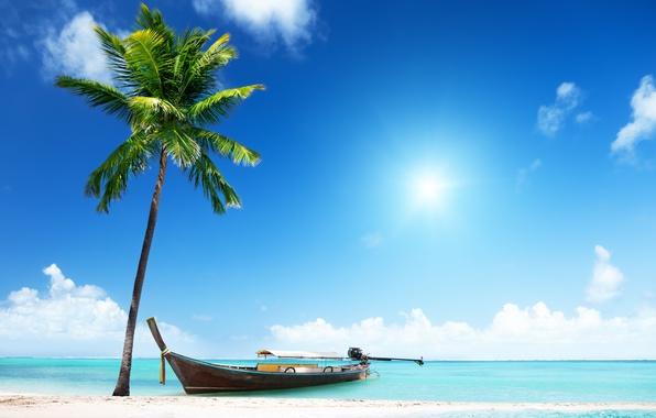 Picture sand, sea, beach, the sun, palm trees, shore, boat, summer, beach, sea, island, sand, paradise, …