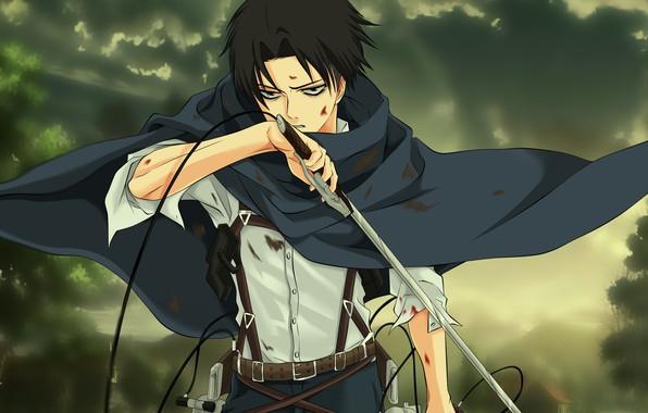 Picture sword, blood, anime, ken, blade, asian, manga, japanese, oriental, asiatic, strong, sugoi, protector, Shingeki no …