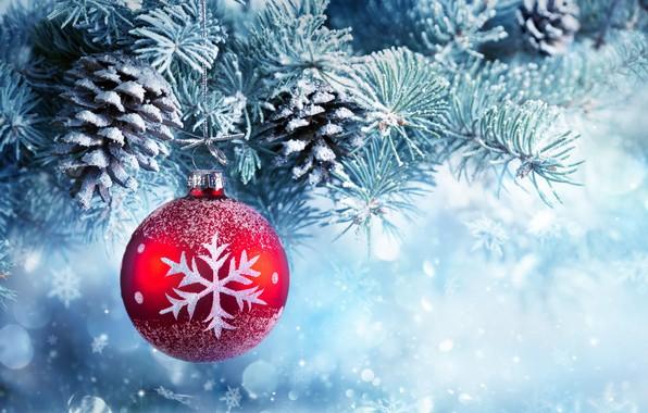 Picture snow, decoration, balls, tree, New Year, Christmas, Christmas, balls, bumps, snow, Merry Christmas, Xmas, decoration