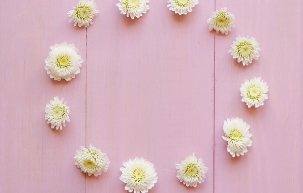 Picture flowers, white, white, buds, wood, pink, flowers, decoration, circle