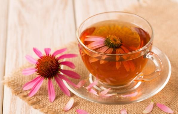 Picture flowers, tea, petals, drink
