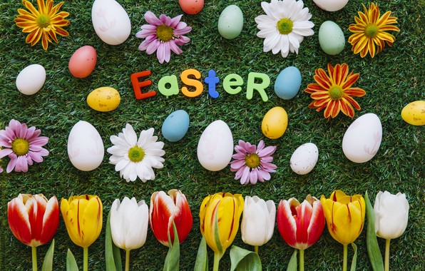 Picture Flowers, Tulips, Easter, Eggs, Weed, Holiday, Chrysanthemum