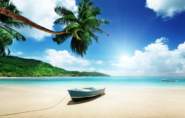 Picture sand, sea, beach, the sun, palm trees, shore, summer, beach, sea, island, sand, paradise, palms, …