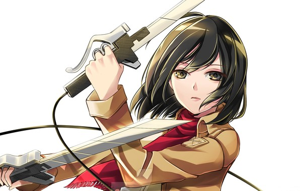 Picture look, white background, swords, art, military uniform, Shingeki no Kyojin, Mikasa Ackerman, red scarf, The …