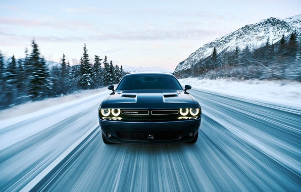 Picture sky, dodge, challenger, mountains, speed, racing, spruce, movement, riding