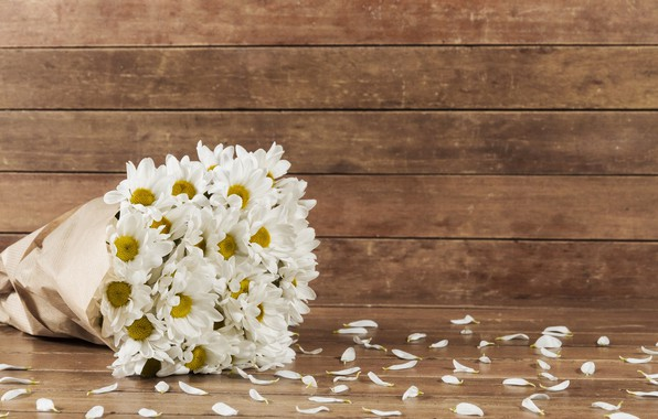 Picture flowers, bouquet, petals, chrysanthemum