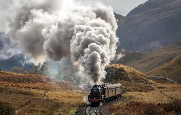 Picture nature, train, railroad