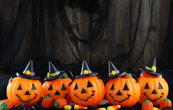 Picture Pumpkin, halloween, faces