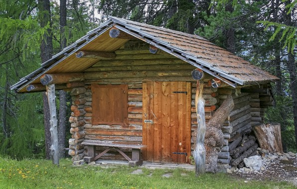 Picture forest, bench, Alps, hut, architecture, pine, frame, the cabin in the woods, log design, Log …