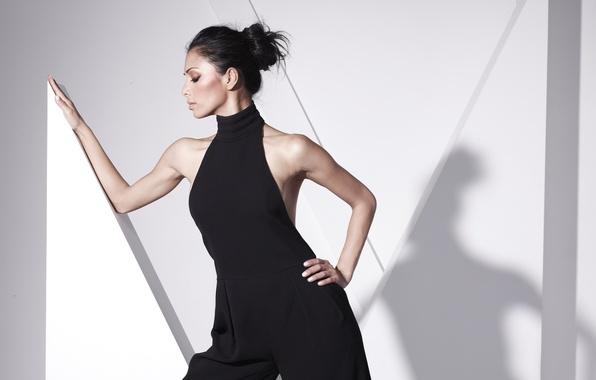 Picture brunette, Nicole Scherzinger, profile, singer