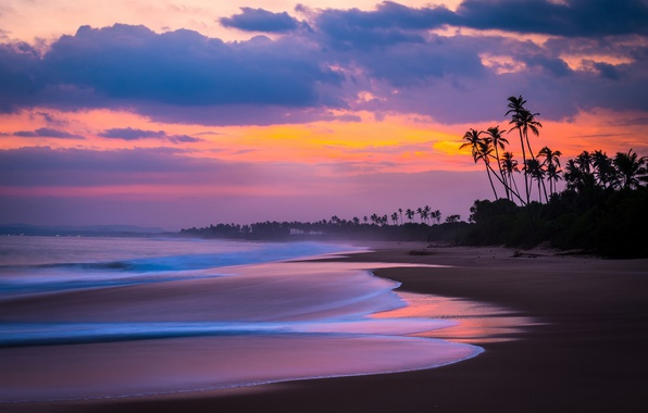 Photo wallpaper sea, beach, the sky, clouds, palm trees, the ocean, the evening