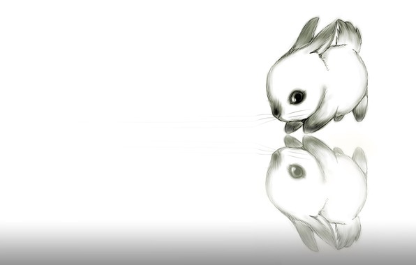Picture figure, rabbit, baby, art, pencil, Bunny, picture, ears, children's