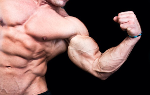 Picture pose, muscle, muscle, press, athlete, bodybuilder, abs, biceps, bodybuilder, Bodybuilder, Biceps