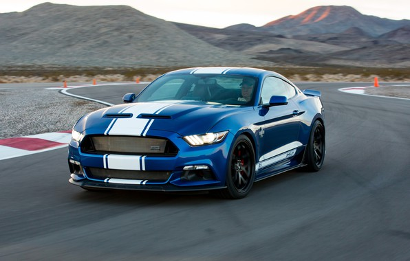 Picture Shelby, racing track, Super Shake
