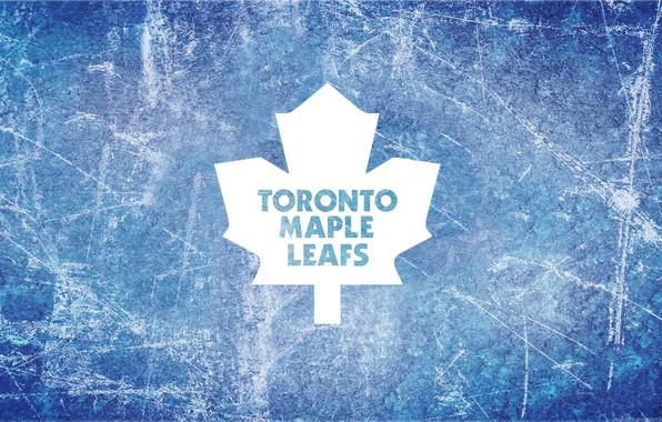 Picture ice, emblem, Toronto, maple leaf, NHL, nhl, Toronto Maple Leafs, hockey team